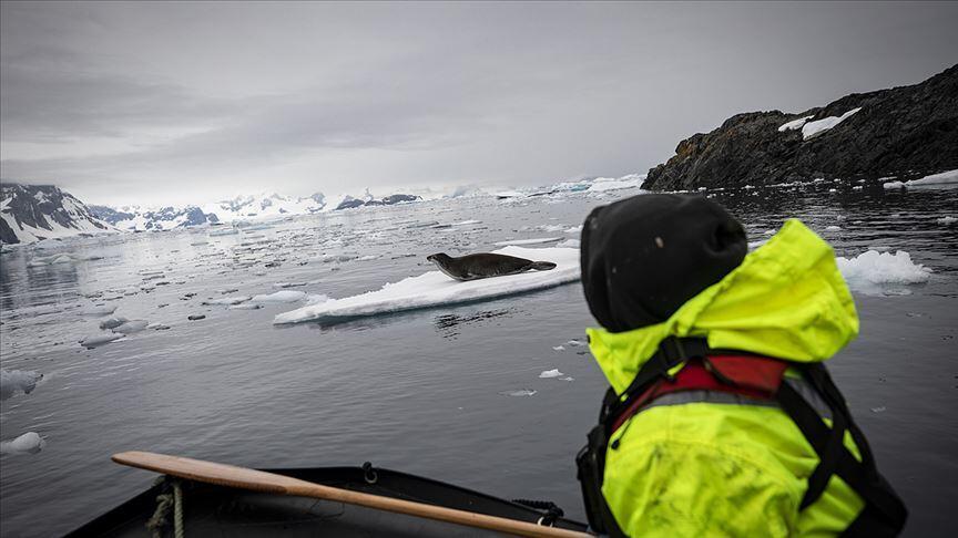 TÜBİTAK'tan Antarktika çağrısı