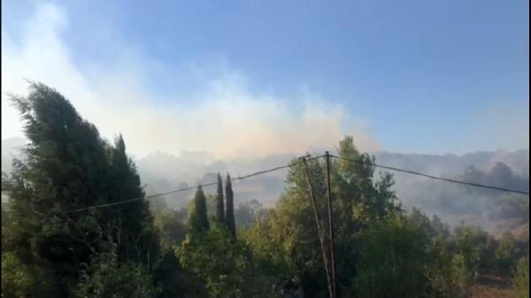 Biga'da korkutan yangın!