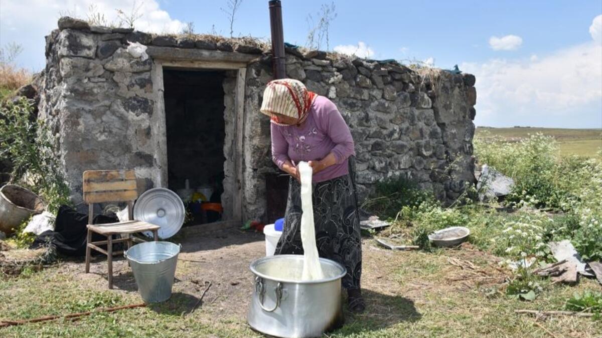 """Kars yaylalarında """"çeçil peyniri"""" hazırlığı"""