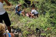 Alanyada safari cipi devrildi