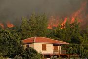 İzmirin 3 ilçesinde orman yangını