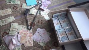 9 ilde sahte lira ve dolar operasyonu: 61 gözaltı
