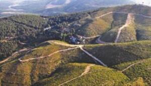 Kutsal dağ 7 yılda yemyeşil