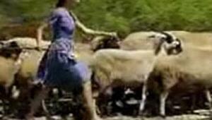 Bihter çoban oldu
