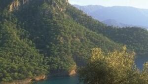 Dervişin dağından meditasyon koyuna