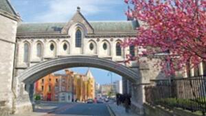 Dublin'in festival mevsimi