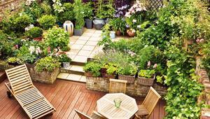 Gelecek şehir ve balkon bahçeciliğinde