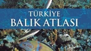 Herkese Türkiye Balık Atlası