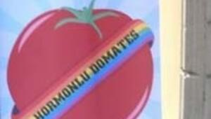 Yılın hormonlu domatesi seçildi