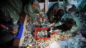 Balıkçılar mevzuatı tartıştı