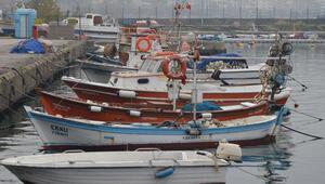 Bakanlık, bin 11 balıkçı teknesine 138 milyon lira ödedi