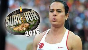 Nagihan Karadere Survivor 2016 Ünlüler Kadrosunda