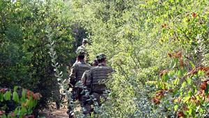 Firari darbeci askerlerden ikisi fırından ekmek çaldı iddiası