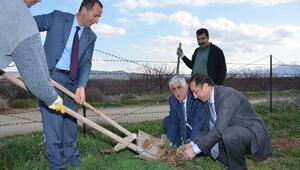 Battalgazi Belediyesi 100 Bin Fidanı Toprakla Buluşturacak