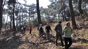 Bayraklı Belediyesi'nden Doğa Yürüyüşüne Davet