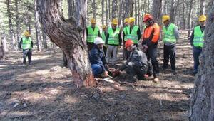 Orman Köylüsüne Ağaç Kesme Eğitimi