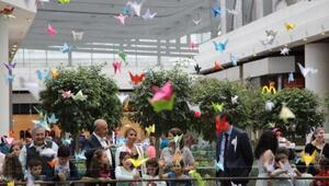 6 bin 972 origami ile Dünya Çocuk Rekorları Kitabına girdiler