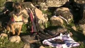 Diyarbakırda cinayet aleti aranırken cephanelik bulundu