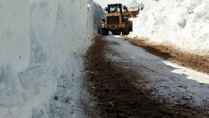Başkale'de karla mücadele bugün de sürdü