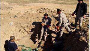 IŞİD Musul ve Kerkük bölgesini adeta patlayıcı deposuna çevirmiş
