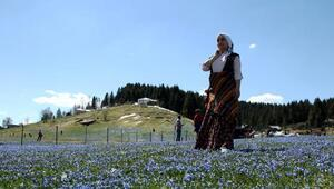 Trabzon'a, yapay 3 yeni Uzungöl