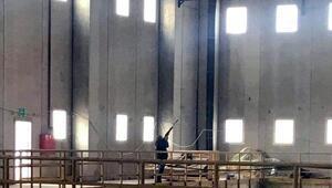 Fabrika müdürüne havalı tüfekle güvercin vurma soruşturması