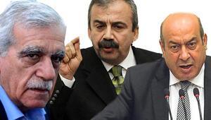 HDPde Türk formülü