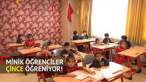 Türkiyenin Küçük Konfüçyüsleri yetişiyor