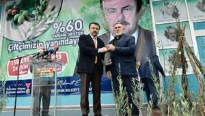 Afrin şehitleri adına 150 bin fidan