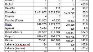 TZOB/Bayraktar: Seracılık üretimi sekiz milyon tona dayandı
