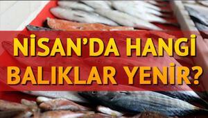 Nisan ayında hangi balık yenir Hangi ayda hangi balık tüketilmeli