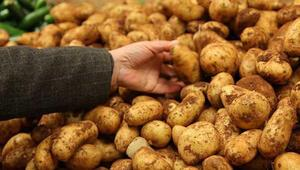 Patates fiyatı dibi gördü