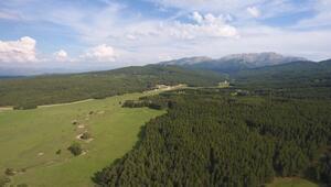 Ege'nin Çatısı; Honaz Dağı Milli Parkı