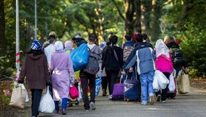 Hollandada mültecilere tuvalet temizleme zorunluluğu