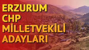 CHP Erzurum milletvekili adayları kimler İşte 2018 Erzurum milletvekili adayları