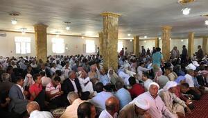 AK Partili vekilden 5 bin kişiye teşekkür yemeği