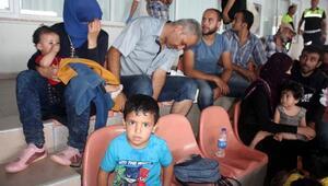 Tekne su alınca Suriyeli 149 kaçak, koyda mahsur kaldı