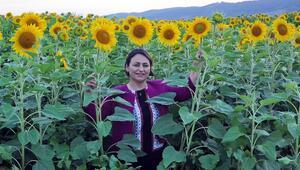 CHP'li Şevkin: Ayçiçeği üreticisinin önü açılmalı