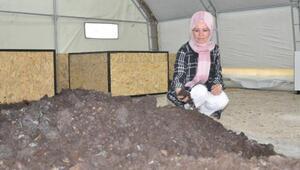 Kadın girişimci, 700 bin solucanla gübre üretiyor