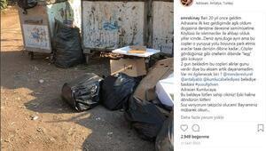 Emre Kınaydan Adrasanda çöp tepkisi