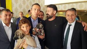 Ali Koça bir çift kangal köpeği yavrusu hediye edildi