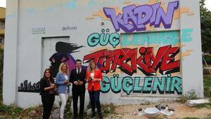 Elektrik trafosu, Kadın güçlenirse Türkiye güçlenir mesajıyla renklendirildi