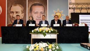 AK Partiden Adanada, elektronik temayül yoklaması