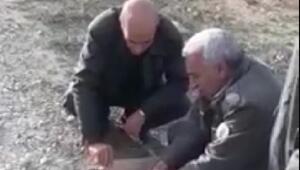 Tedavileri tamamlanan kara akbaba ve çulluk kuşu doğaya bırakıldı