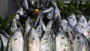 Balık çoğalınca balıkhane müşteri akınına uğradı