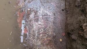 Herkes Çingene kızı mozaiğini konuşurken İznikteki mozaik gün ışığına çıkarılmayı bekliyor