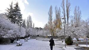 Başkent'te kışın ilk karı