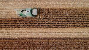 Tarımsal krediler yeniden vadelendirilebilecek
