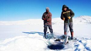 Donan Çıldır Gölünde, Eskimo usulü balık avlıyorlar