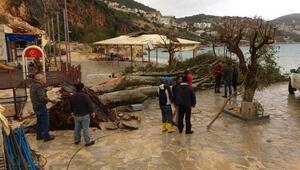 Fırtına, Kalkanda ağaçları devirdi, çatıları uçurdu